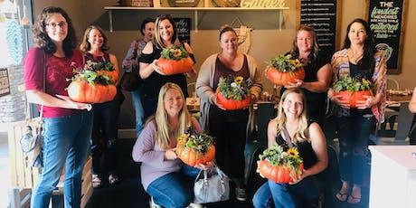 Cinderella Pumpkin Succulents  tickets