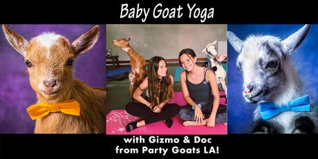 Baby Goat Yoga in Hollywood! tickets