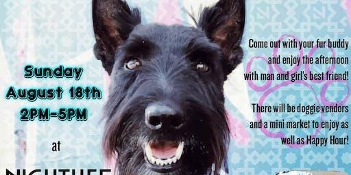 Hamilton Barkley Doggie Meet Up