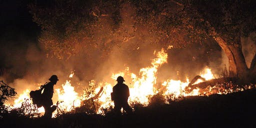 Wilder Than Wild: Film Screening and Panel on Wildfires in San Mateo County