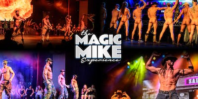 The Magic Mike Experience at The Token Lounge (Westland, MI)