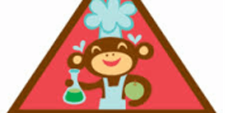 Home Scientist Brownie Badge tickets
