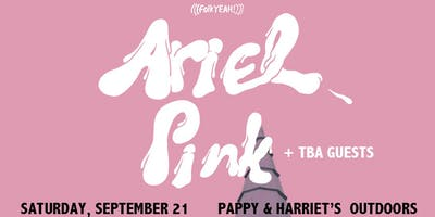ARIEL PINK ::: Pappy & Harriet's Pioneertown ::: September 21, 2019