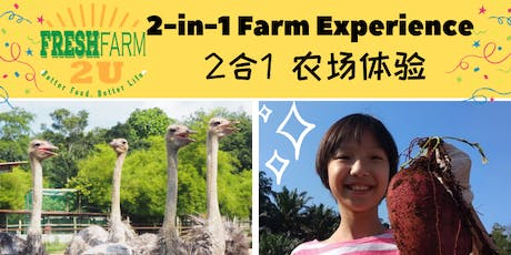 2 in 1 Farm Experience Package  tickets