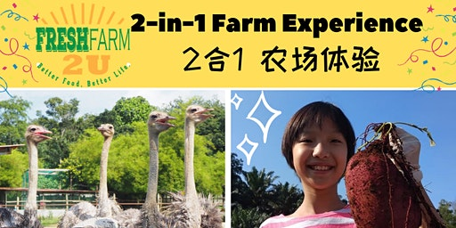 2 in 1 Farm Experience Package