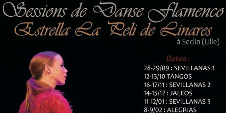 Stage de danse Flamenco  billets