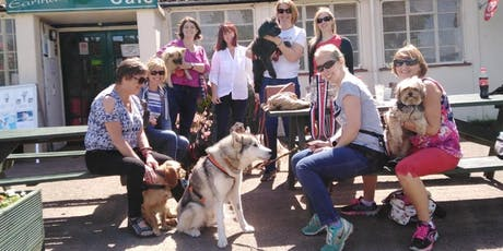 HER Business Revolution Dogwalk Network tickets