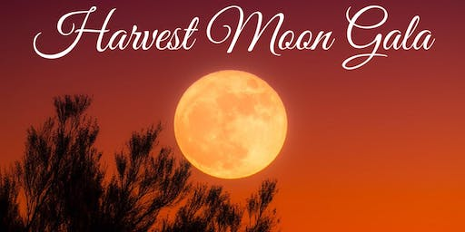 Harvest Moon Gala for WE Public Library Levy