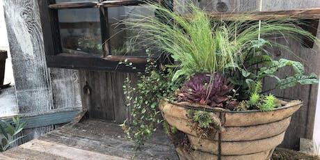 Autumn Container Garden Workshop tickets