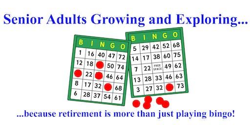 Retirement Pleasures & Pitfalls: A Discussion & Social Event for Seniors 40