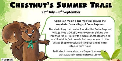 Chestnut's Summer Trail