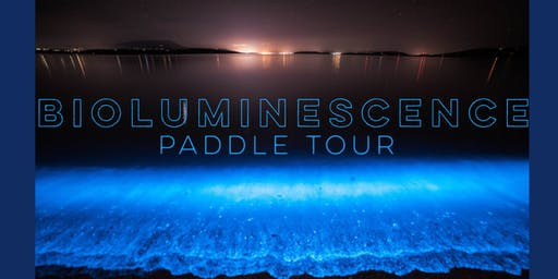 Bioluminescence Paddle Tour