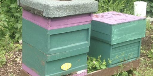 Talk: An insight to beekeeping with Dr Ryad Alsous