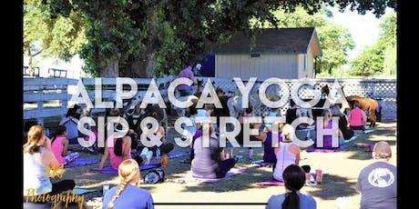 Alpaca Yoga- Sip and Stretch  tickets