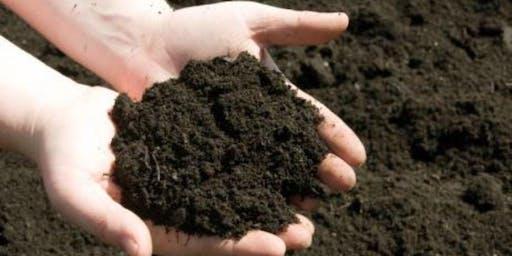 Don't Treat Your Soil Like Dirt!
