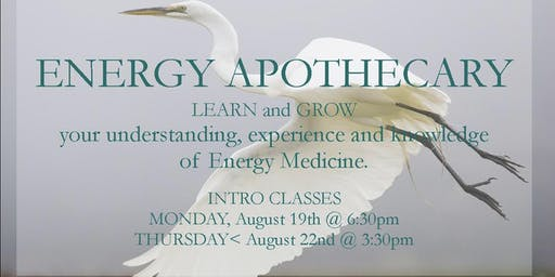 ENERGY APOTHECARY, Practical tips for your everyday energy medicine cabinet.