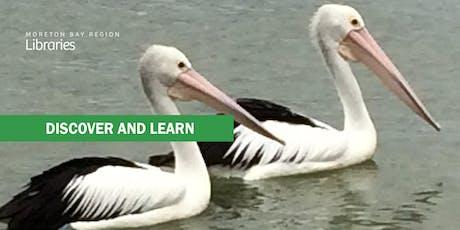 Birds of Bribie Island - Bribie Island Library tickets