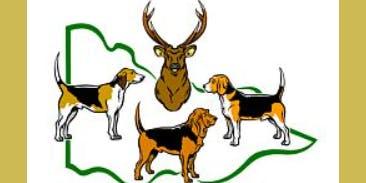 Hound Hunting Test - Victorian Hound Hunters Inc AGM Healesville 2019