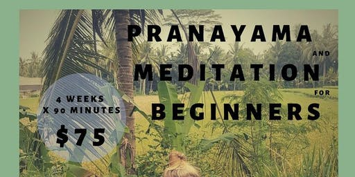 Pranayama and Meditation for Beginners with Rachel Garbary at The Light Room