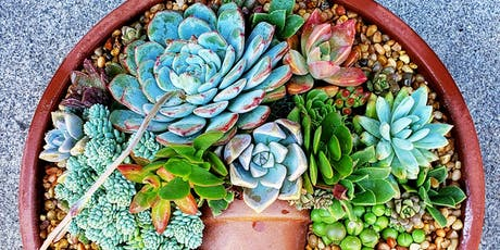 Succulent Flatlay Workshop at Groundswell (Chula Vista) tickets