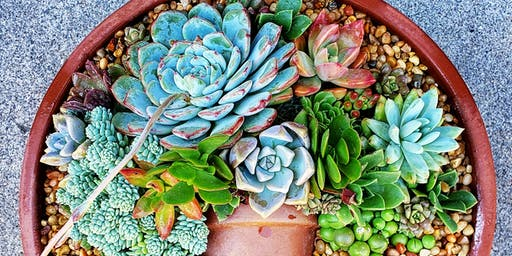 Succulent Flatlay Workshop at Groundswell (Chula Vista)