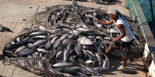 Kiribati: 2019 economic survey