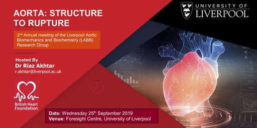 Aorta: Structure to Rupture 2019