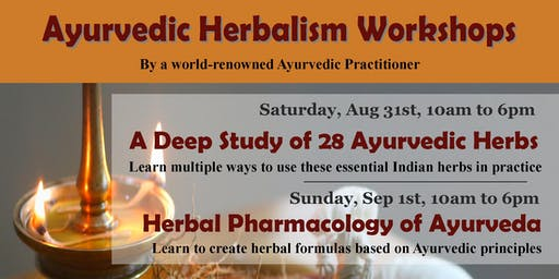 1-day workshop: A Deep Study of 28 Ayurvedic Herbs