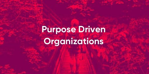 Purpose Driven Organization - Case Study -
