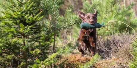 """Der """"bewegte"""" Hund - Outdoor Portrait- und Actionfotografie Tickets"""