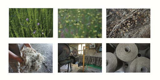 Flax, fibres and spinning workshop