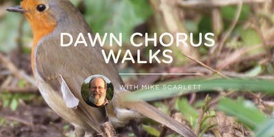 Dawn Chorus Walk 2 - Saturday 25th April 2020
