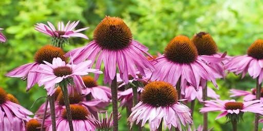 Perennial Garden Design Tour