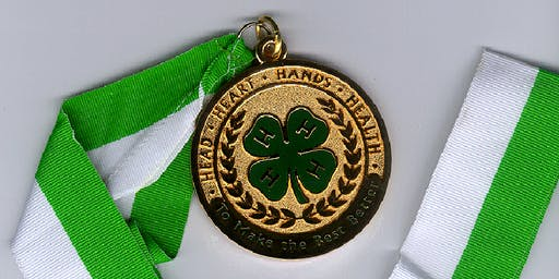 Recognizing 4-H Youth