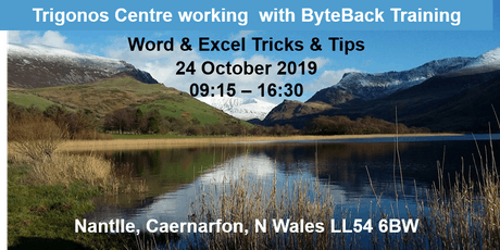 Microsoft Word & Excel Tricks & Tips tickets