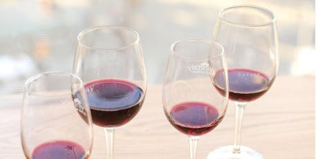 Sip & Savor: Wine Tasting with Chilled Reds and Salumi tickets