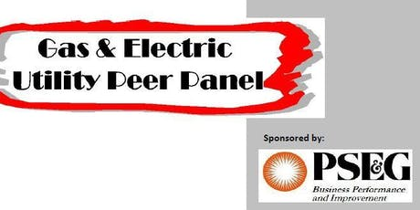 Benchmarking 2020  The Gas and Electric Utility Peer Panel Kick-Off Meeting tickets