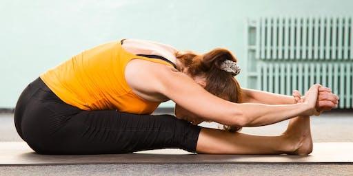 Yoga Flow (XPHE 227 01)