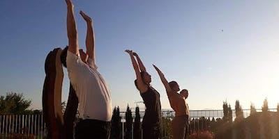 Sommer Yoga am Bodensee. Meditation. Wandern. Schwimmen.@Lochau/Bregenz