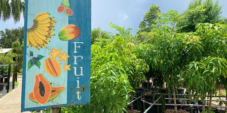 Top 10 Fruiting Plants for Brevard tickets