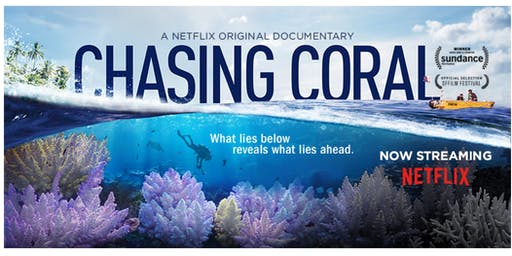 Screening of Chasing Coral at The Box Gallery