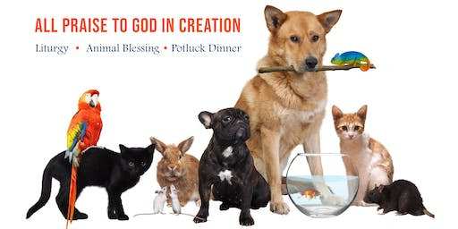 Eucharistic Liturgy, Blessing of Animals and Potluck Dinner