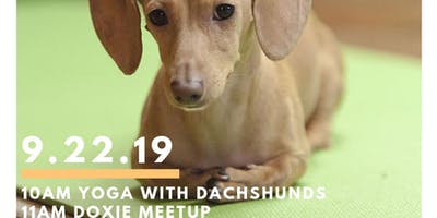 SOLD OUT!! Downward Dachshund - Yoga with Doxies!