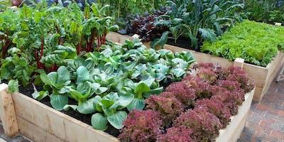 Fall Vegetable Gardening Class