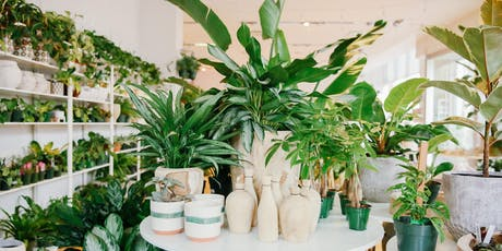 Indoor Plant Care & Selection - BP tickets