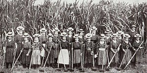 Immigrant Sugar Plantation Workers in Hawaii:  A...