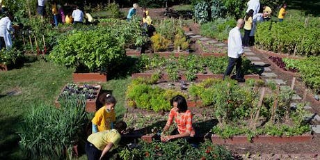 Companion Planting in the Vegetable Garden tickets