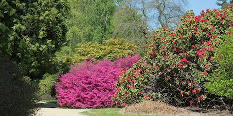 Alternatives to Over Used Trees and Shrubs in the Landscape tickets