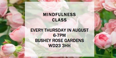Mindfulness class in the Rose Gardens