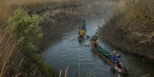The Elephant's Song + Into The Okavango
